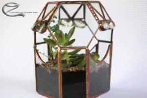 Tiffany florárium, beültetve kis növényekkel, floráriumok