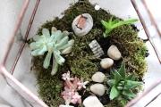kis florarium beultetve