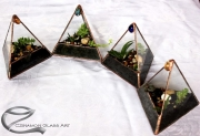 kis-haromszog-florariumok-o2-Small