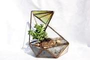 Florarium novenykevel 1d (Small)